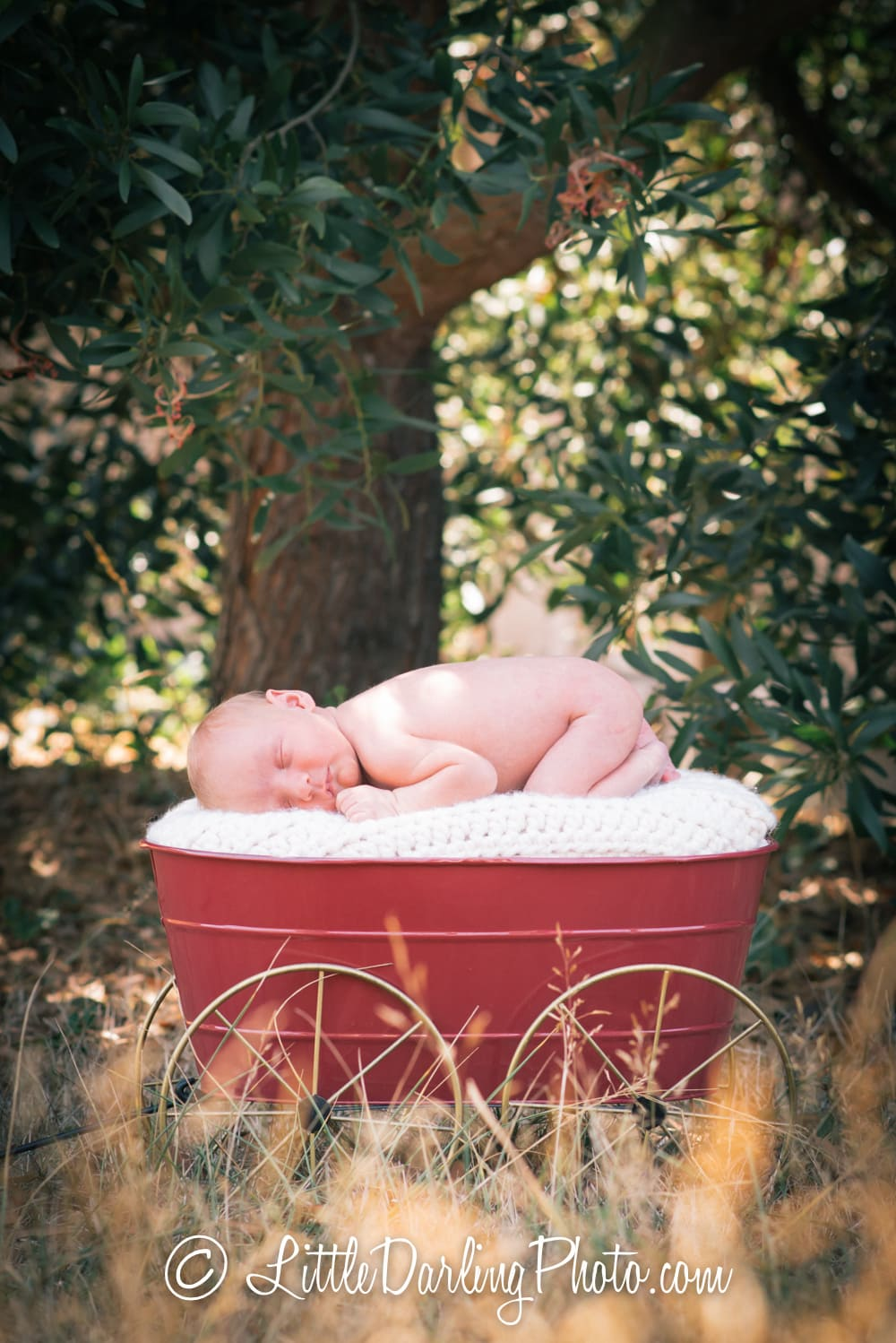 cutest-baby-portrait-outdoors-santa-cruz-california-950625-95060-1